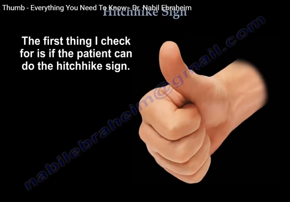 Hitchhike sign