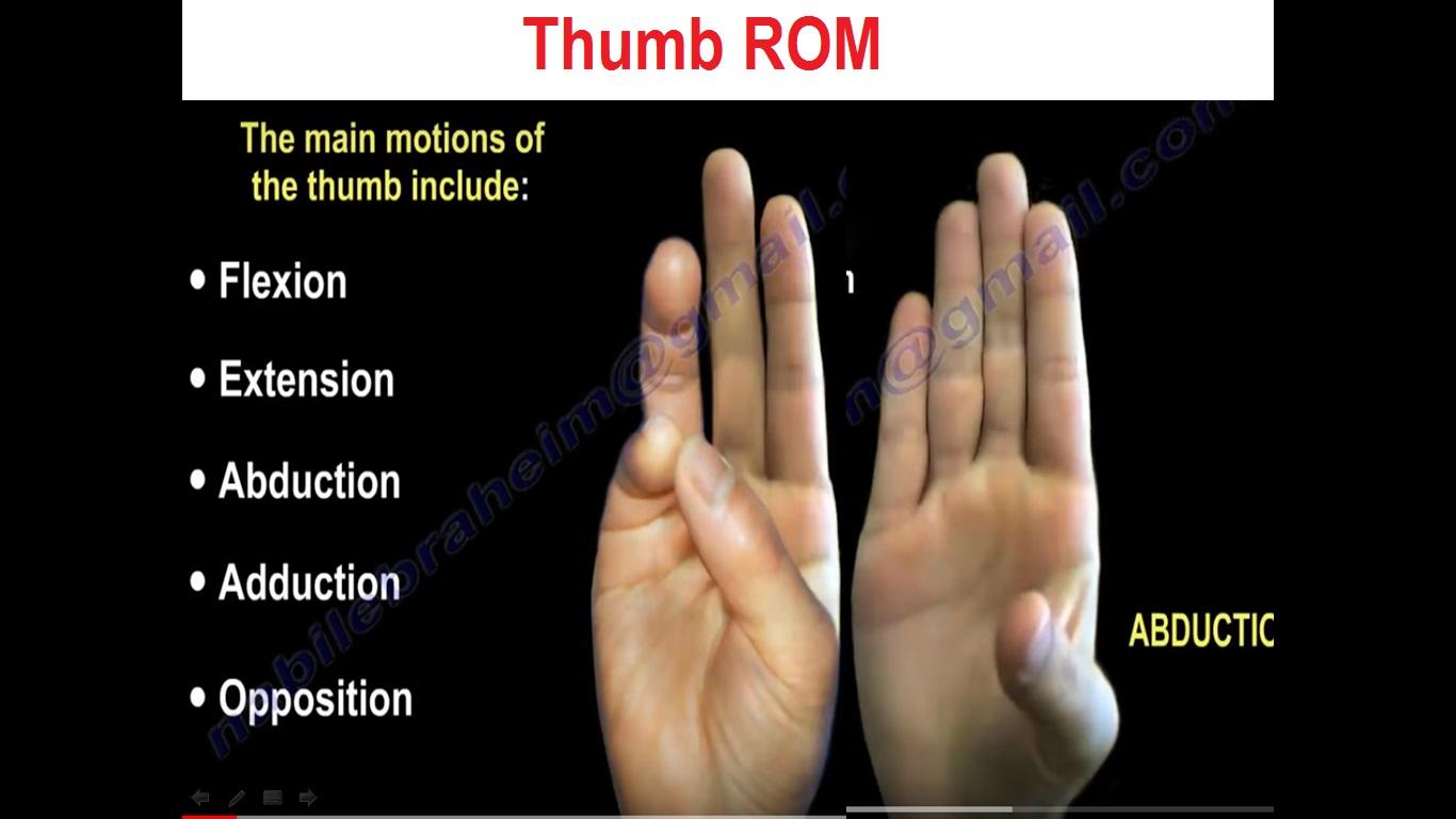 ROM THumb